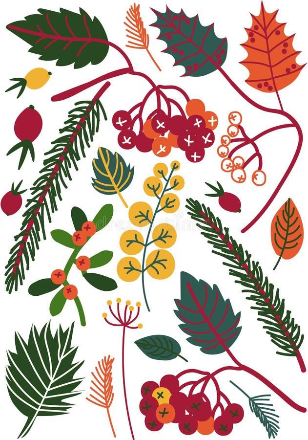 Folhas e bagas coloridas, Autumn Floral Seamless Pattern, ilustração sazonal do vetor da decoração ilustração stock