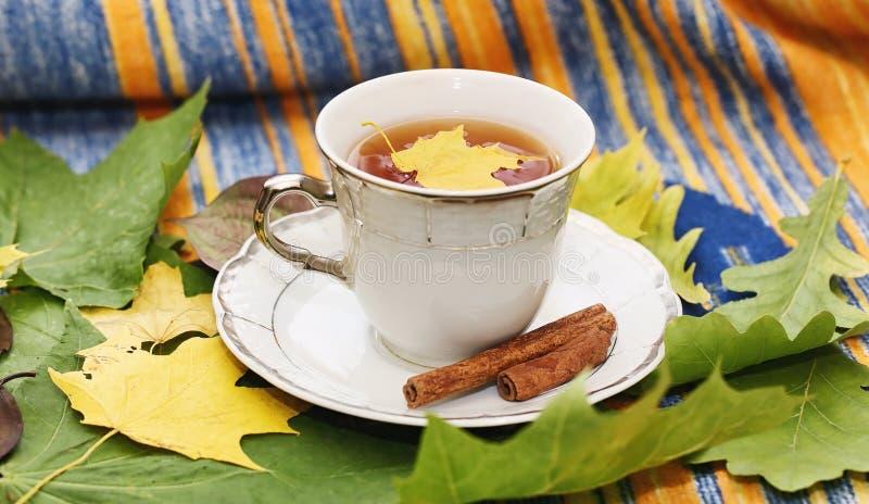 Folhas e chá de outono em uma manta imagens de stock