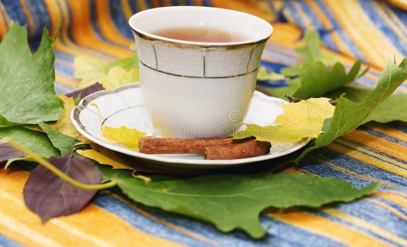 Folhas e chá de outono em uma manta imagens de stock royalty free