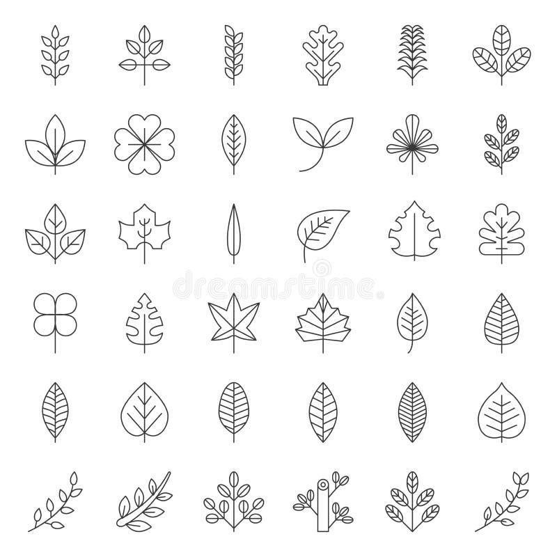 Folhas e grupo do ícone do ramo, linha fina projeto ilustração royalty free