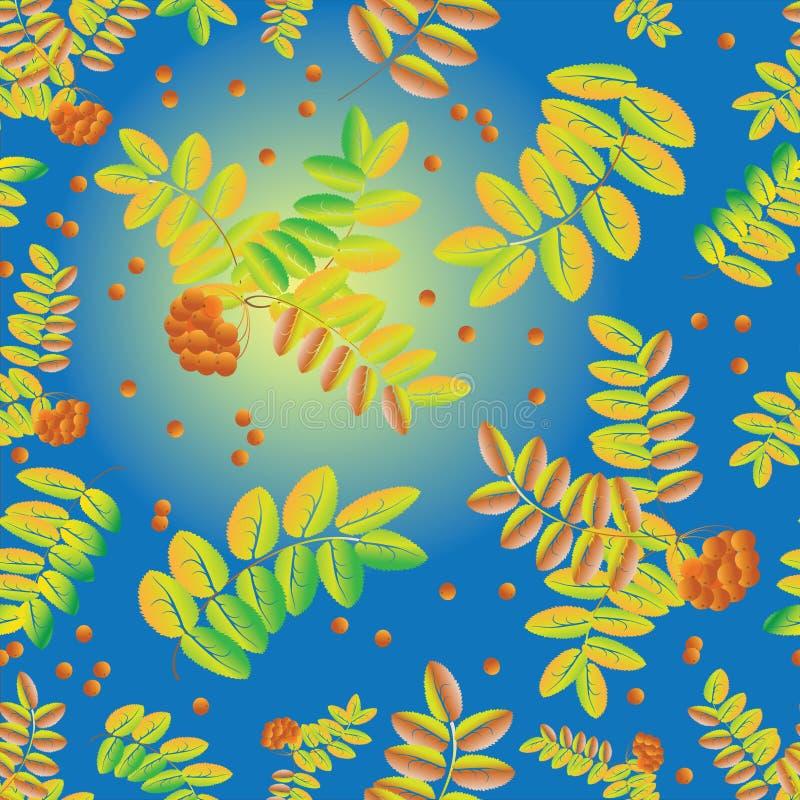 Folhas e grupos das bagas de Rowan em um fundo do céu azul Teste padrão sem emenda das folhas e de bagas maduras da cinza de mont ilustração stock