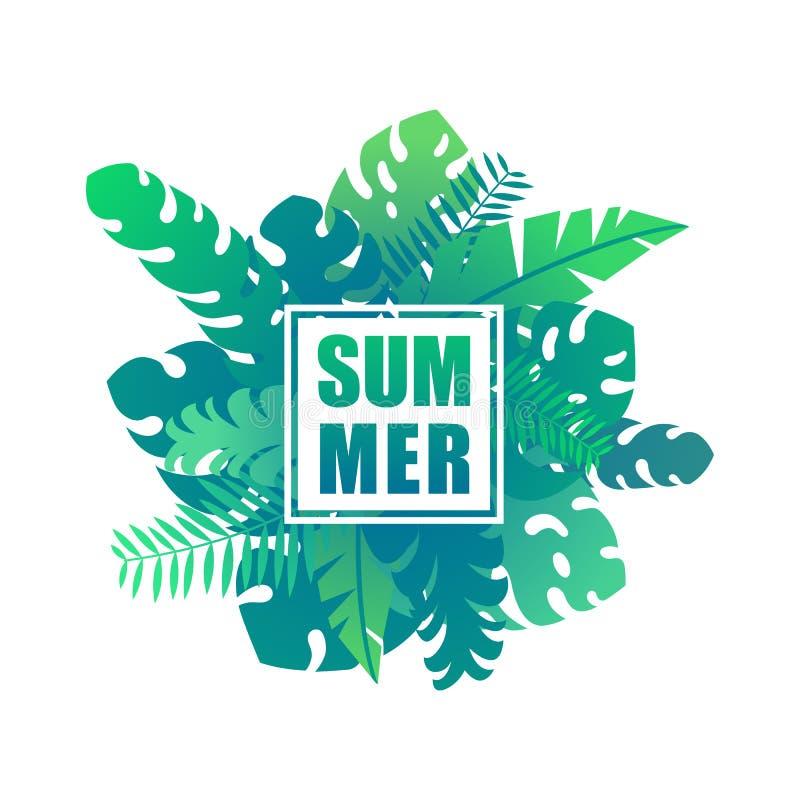 Folhas e plantas tropicais da selva com verão da rotulação ilustração stock