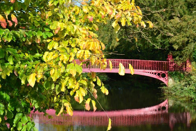 Folhas e ponte de outono imagens de stock royalty free
