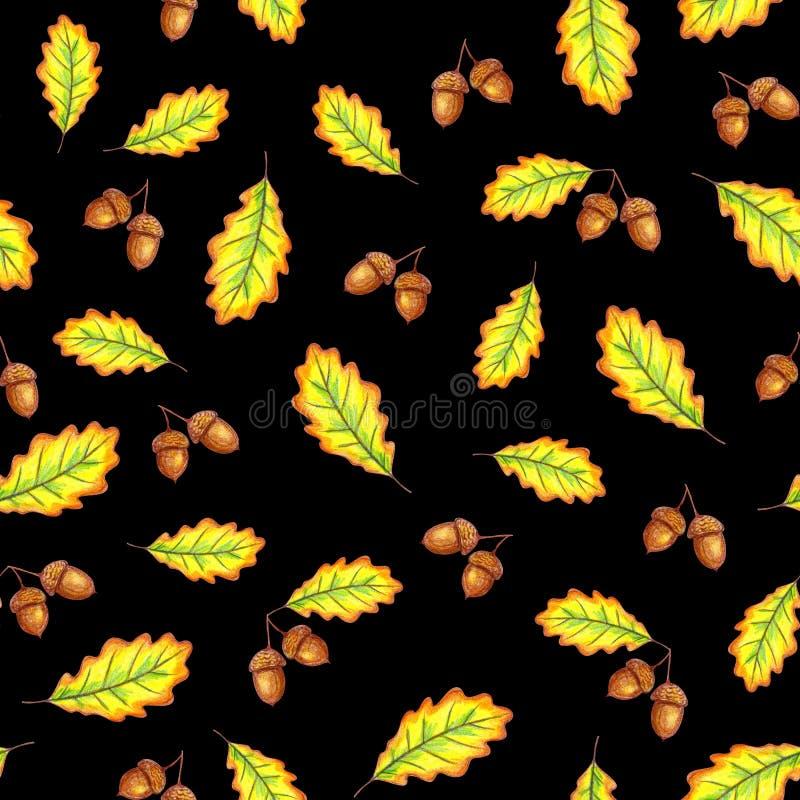 Folhas e porcas do carvalho ilustração stock