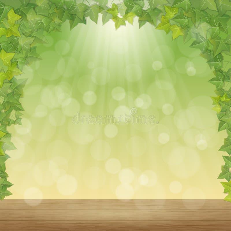 Folhas e raios do sol ilustração royalty free