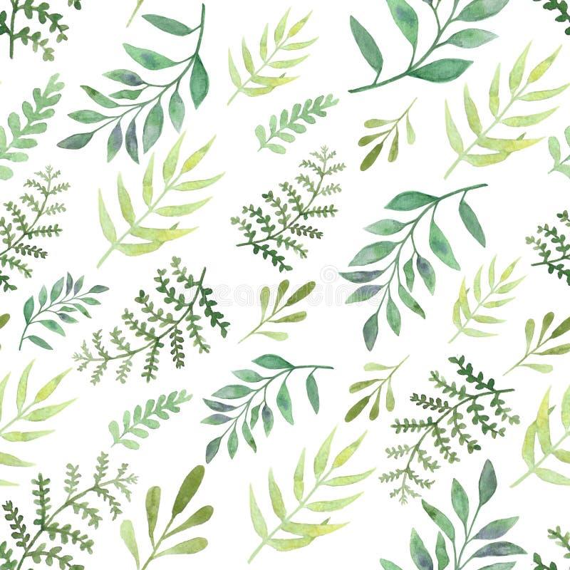 Folhas e ramos sem emenda dos testes padrões da aquarela Elementos de surpresa do projeto foto de stock