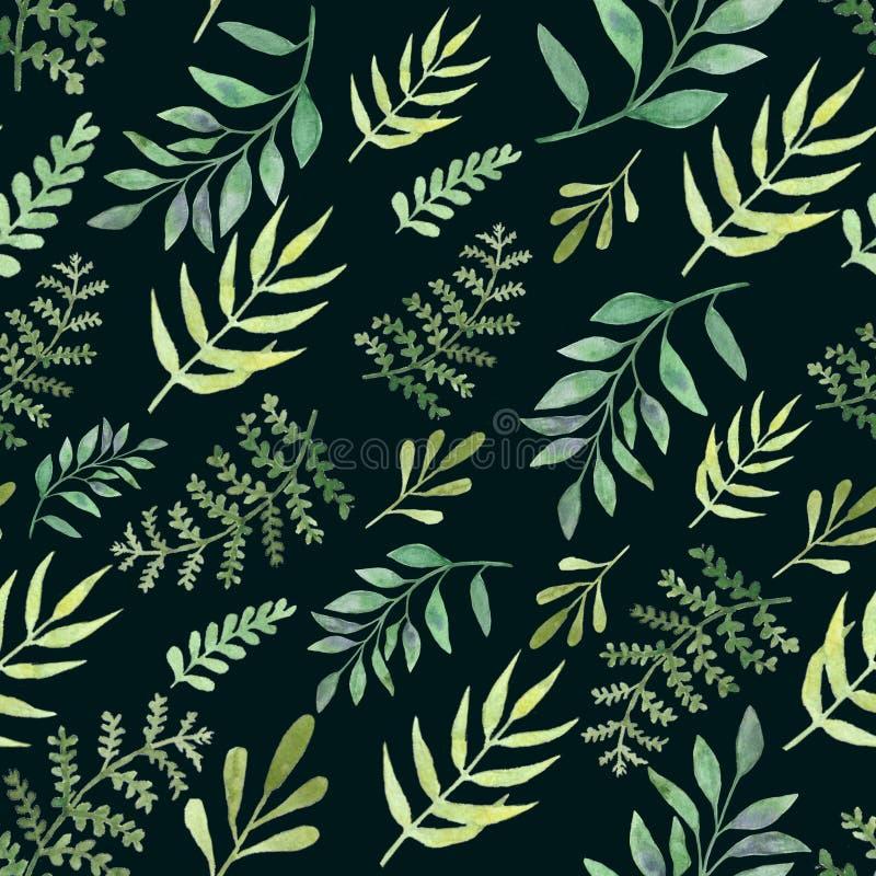 Folhas e ramos sem emenda dos testes padrões da aquarela Elementos de surpresa do projeto imagens de stock royalty free