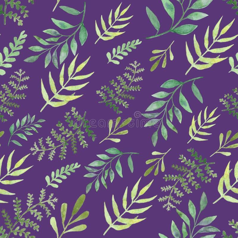 Folhas e ramos sem emenda dos testes padrões da aquarela Elementos de surpresa do projeto fotografia de stock