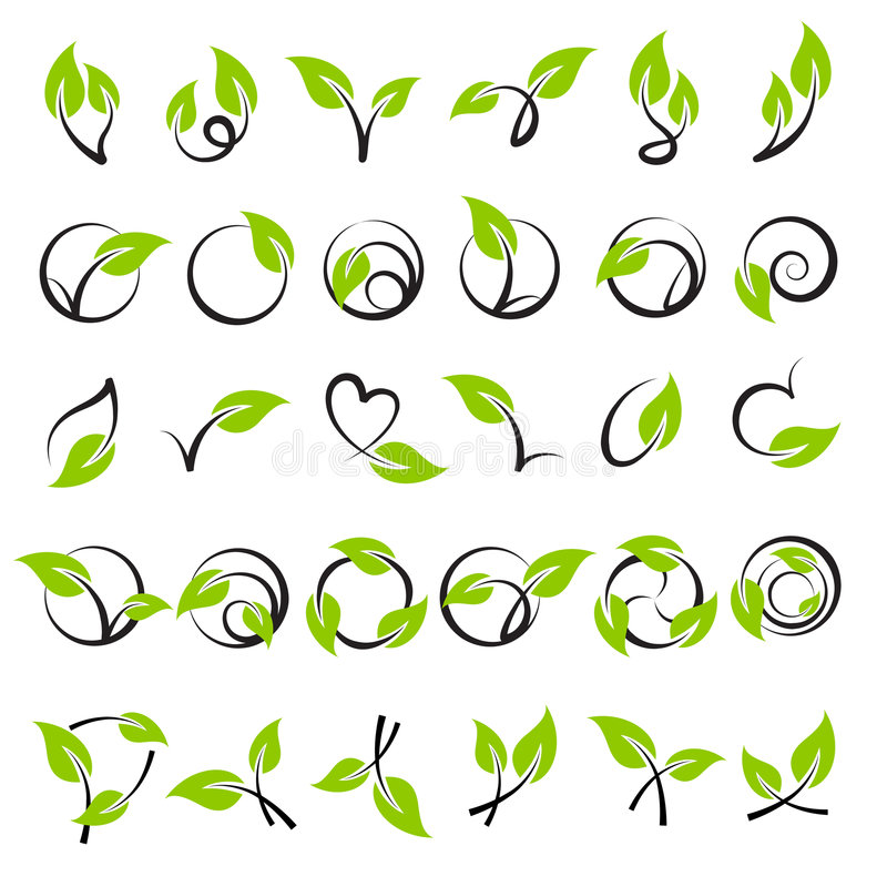 Folhas. Elementos para o projeto. ilustração stock