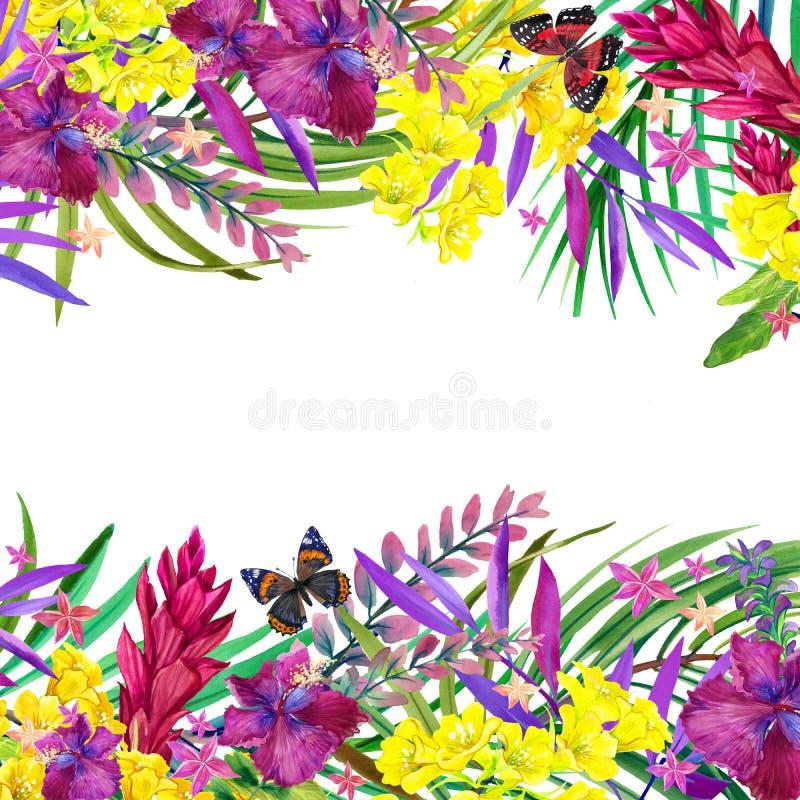 Folhas, flores e borboleta tropicais ilustração royalty free