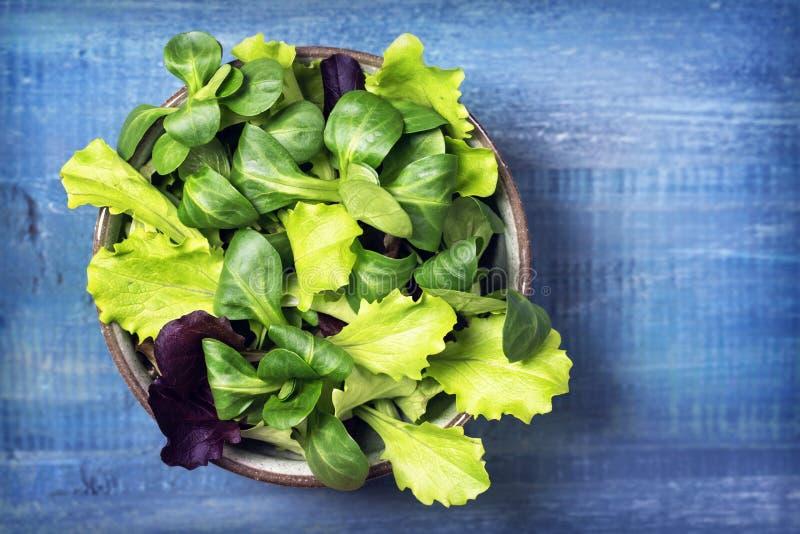 Folhas misturadas da salada verde em uma bacia imagens de stock