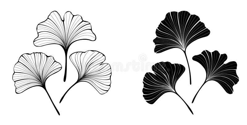 Folhas monocromáticas do biloba do ginko ilustração royalty free