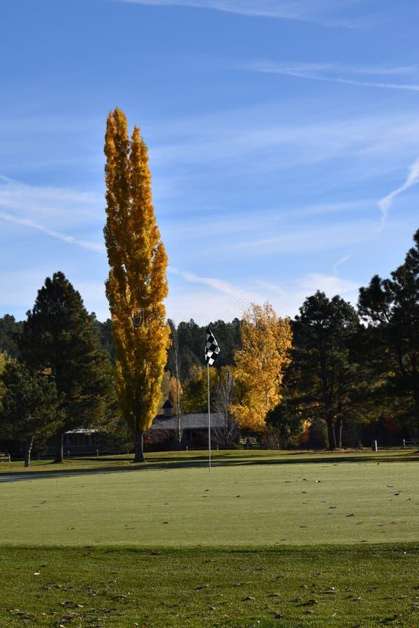 Folhas nas árvores que mudam a cor no campo de golfe imagens de stock