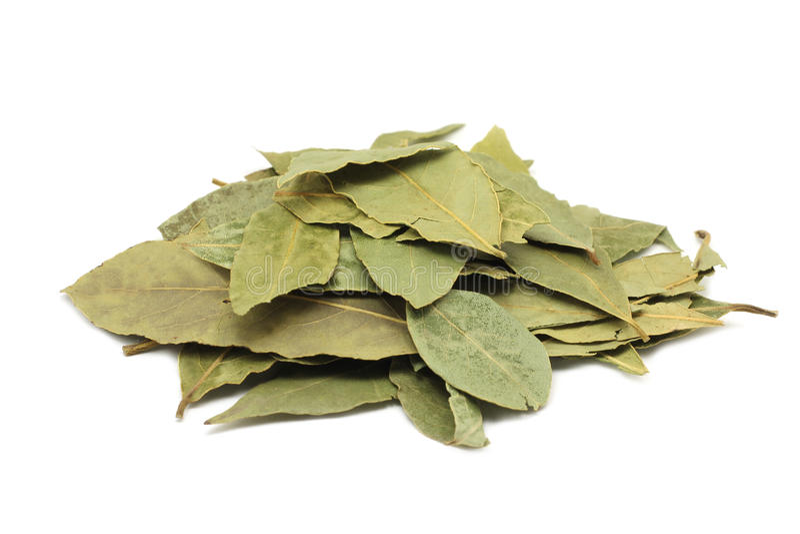 Folhas secadas da folha de louro fotos de stock