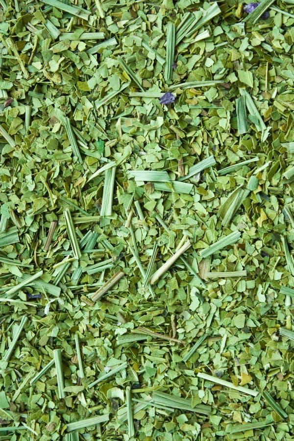 Folhas secas do companheiro do yerba foto de stock