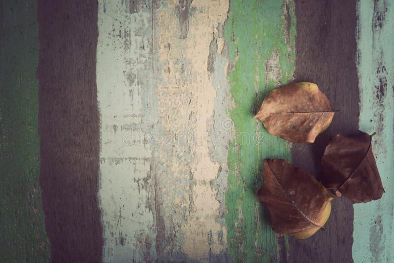 Folhas secas no fundo material de madeira para o papel de parede do vintage foto de stock