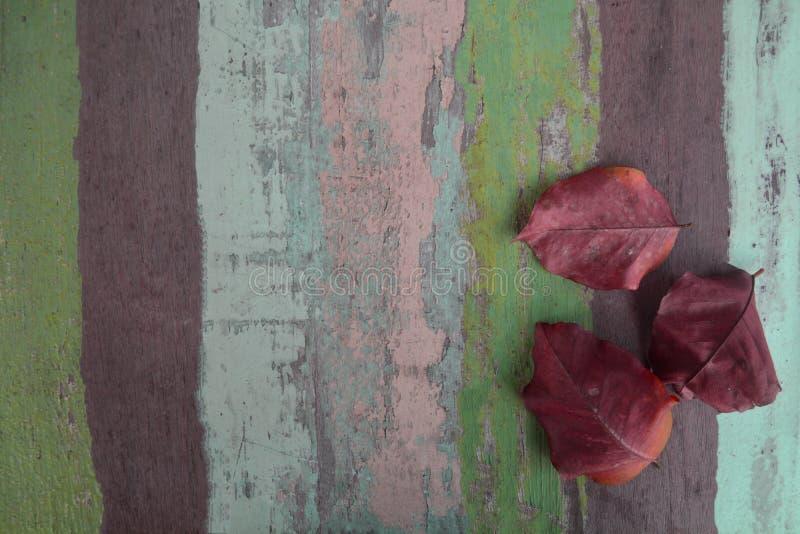 Folhas secas no fundo material de madeira para o papel de parede do vintage imagem de stock