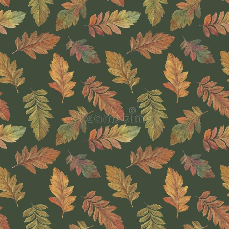 Folhas tiradas na aquarela para o projeto ilustração stock