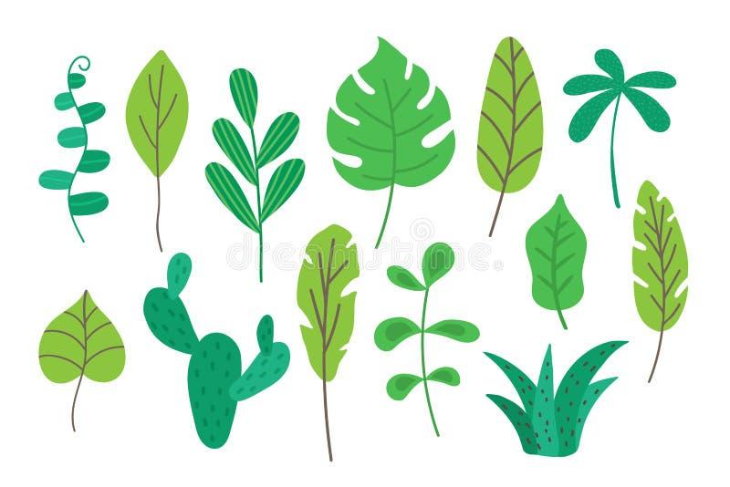 Folhas tropicais ajustadas isoladas no fundo branco Coleção tropica da folha para a decoração para cartões, bandeira, cartaz ilustração do vetor