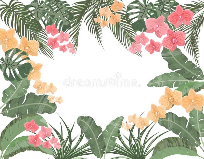 Folhas tropicais da banana, do coco, do monstera e do ogawa, orquídea cor-de-rosa nas cores pastel Lugar para anunciar, propagand ilustração stock
