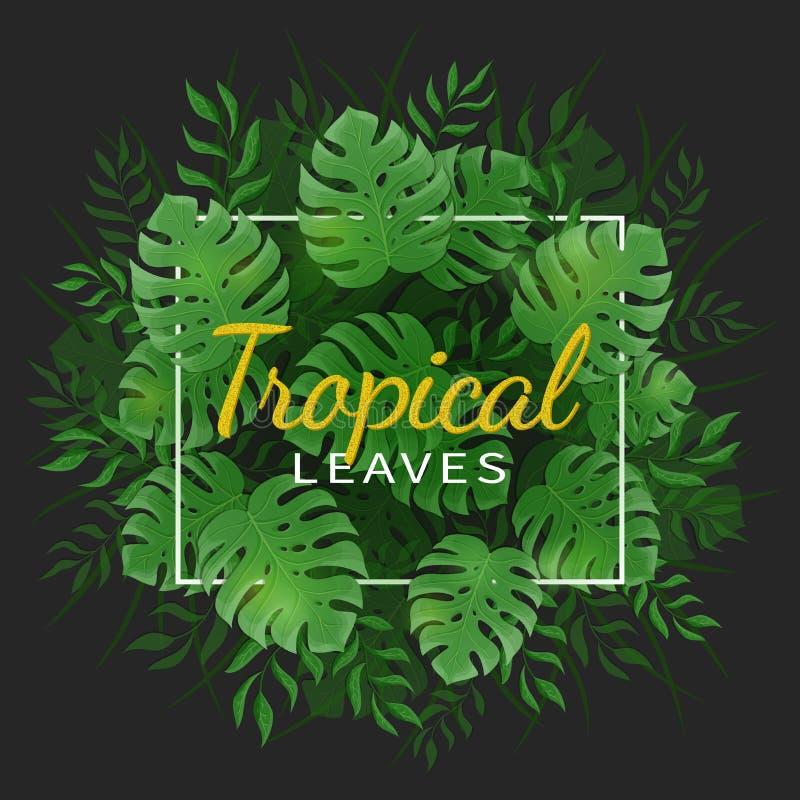 Folhas tropicais da selva Folhas tropicas verdes da palma e do monstera com um quadro no fundo preto ilustração do vetor