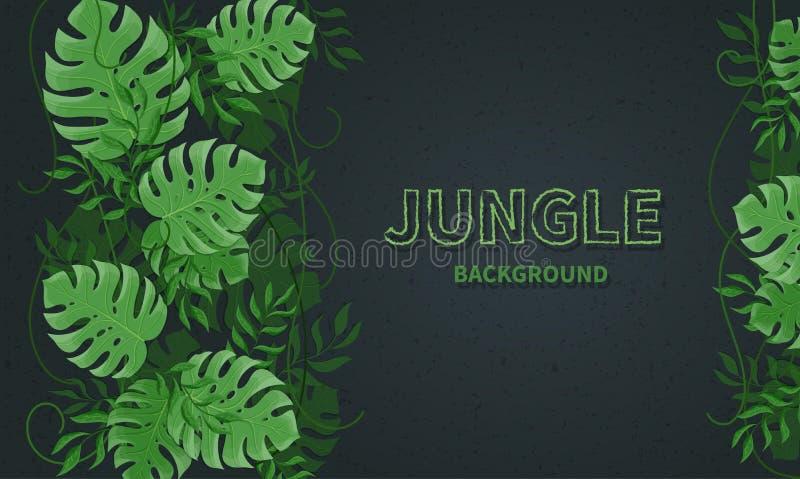 Folhas tropicais da selva Folhas tropicas verdes da palma e do monstera, lianas no fundo preto ilustração do vetor