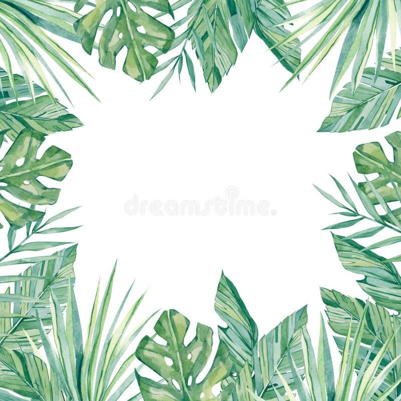 Folhas tropicais e ramos da bandeira da aquarela isolados no fundo branco do molde ilustração stock