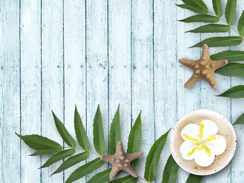 Folhas tropicais, estrela do mar com os produtos dos termas no fundo de madeira azul fotografia de stock royalty free