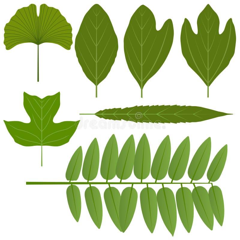 Folhas variadas ilustração stock