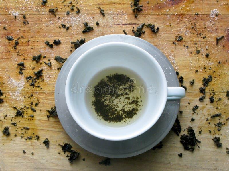 Folhas verdes do te e copo vazio imagem de stock royalty free