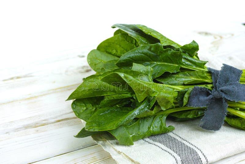 Folhas verdes frescas dos espinafres - conceito da dieta e da saúde fotos de stock royalty free