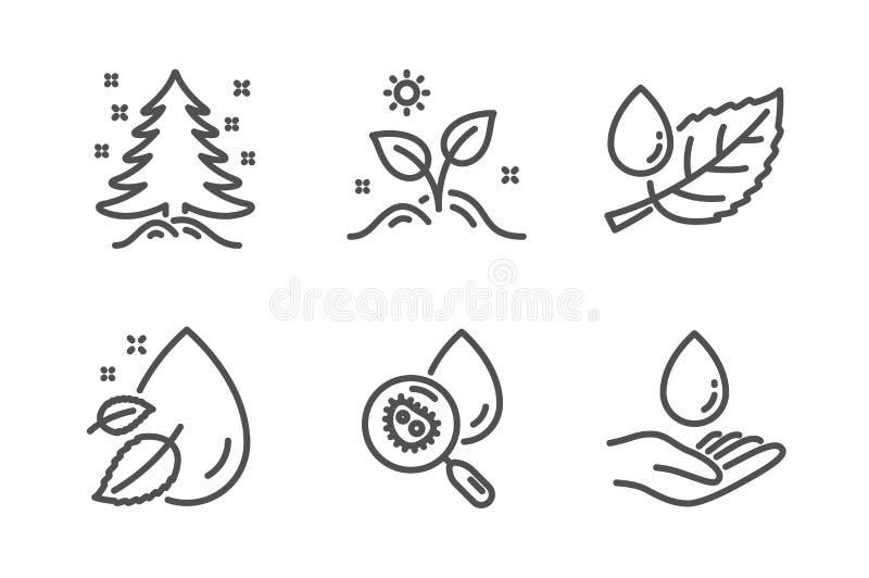 Folheia o orvalho, gota da ?gua e cresce o grupo dos ?cones da planta ?rvore de Natal, sinais da an?lise de ?gua ?leo do soro, fo ilustração do vetor