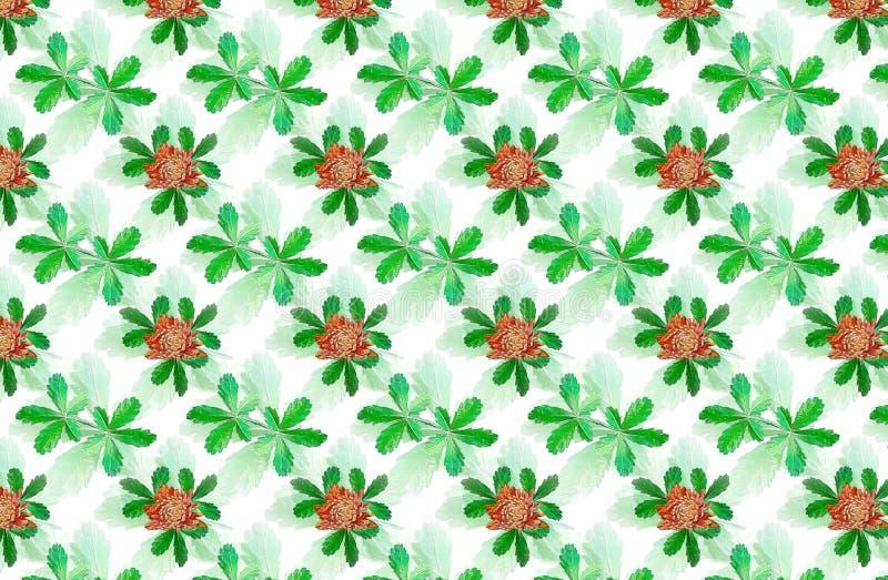 foliage foto de stock