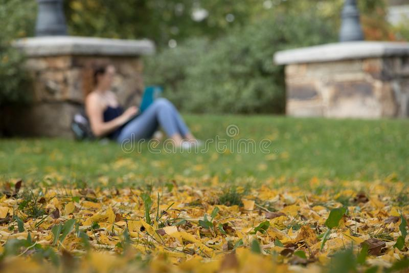Foliage, fall and campus life stock photos