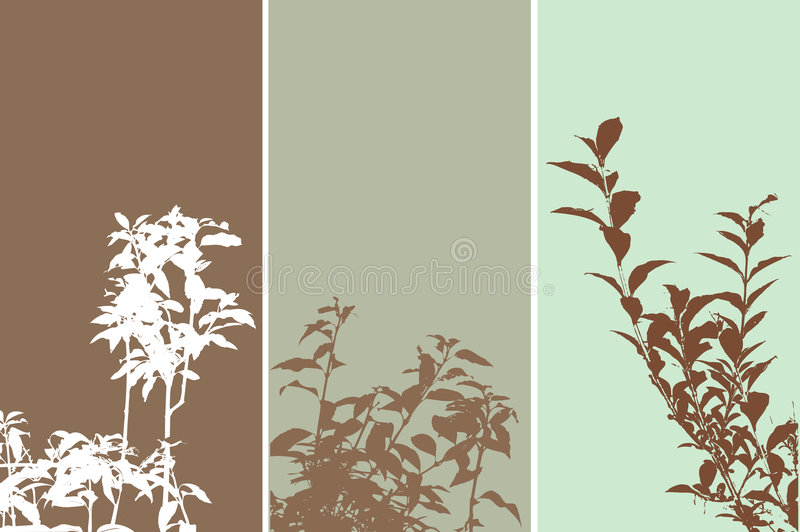 Download Foliage panels stock vector. Image of frame, corner, flower - 375937