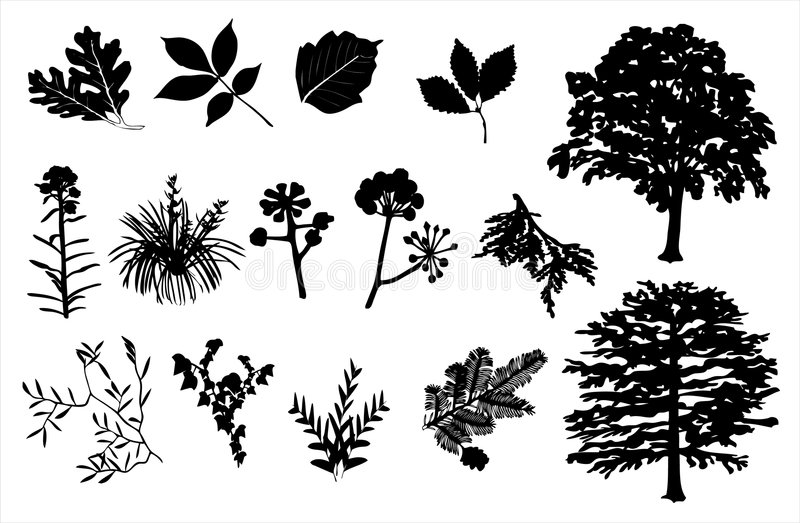 Foliage Silhouette Set Stock Images