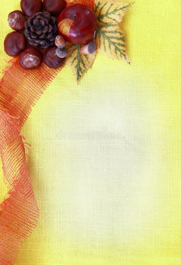 Foliagel-Herbsthintergrund lizenzfreies stockfoto