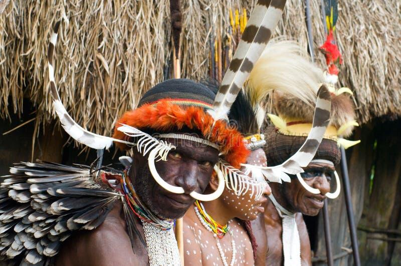Folk av en Papuanstam i traditionell kläder royaltyfri foto