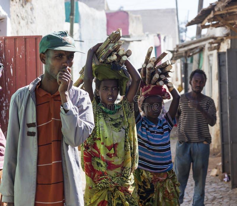 Folk i deras dagliga rutinmässiga aktiviteter som som nästan är oförändrade i mer än fyrahundra år Harar ethiopia royaltyfria bilder