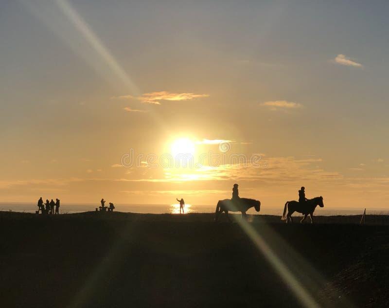 Folk i solen i svart sand i Island arkivfoto