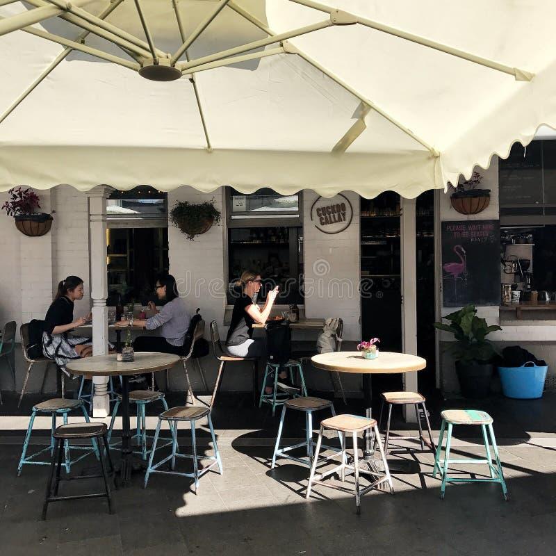 Folk i utomhus- kafé i Sydney Australia royaltyfria bilder