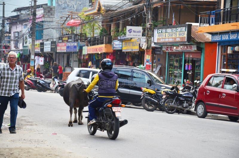 Folk och trafik på vägen på den Pokhara gatamarknaden royaltyfria bilder