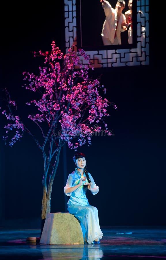 Folk opera: Akacia fotografering för bildbyråer