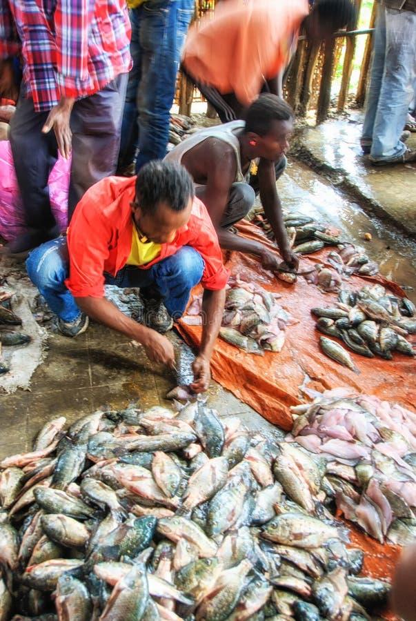 Folk på fiskmarknaden i Awassa, Etiopien royaltyfri fotografi