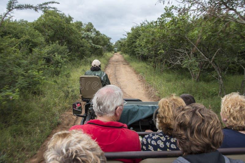 Folk på safari i Sydafrika arkivbild
