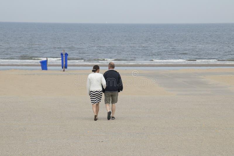 Folk på stranden arkivbild