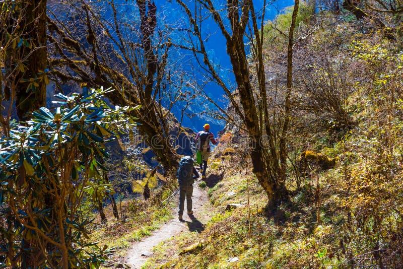 Folk på vandring i tropisk skog i Nepal Himalayas arkivbild