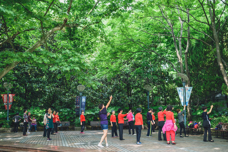 Folk` s parkerar i Shanghai, Kina arkivbilder