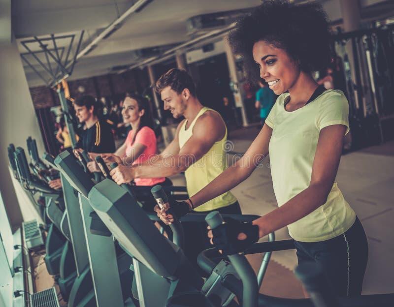 Folk som övar på cardio maskiner för en utbildning royaltyfria foton