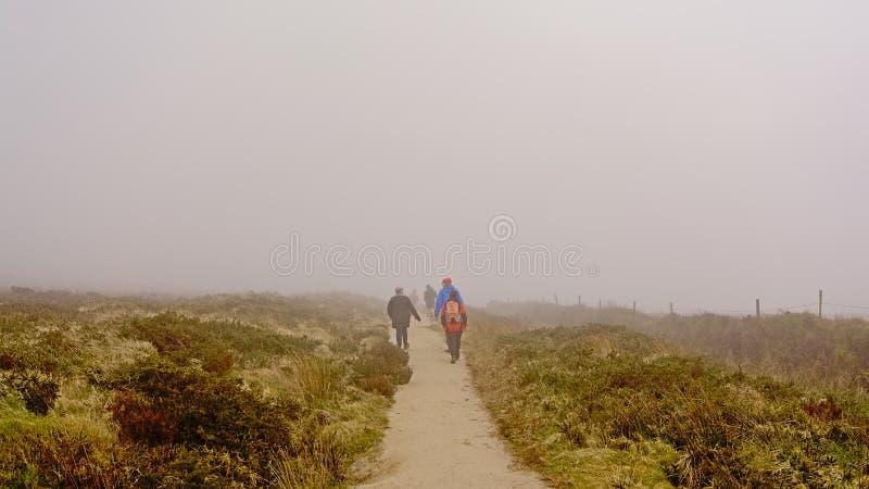 Folk som överst fotvandrar på en bana av dimmiga Ticknock berg med heden arkivbilder